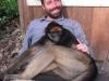 monkeys21
