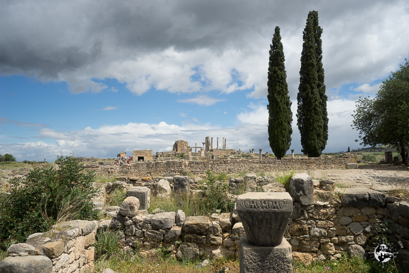 The ruins of Volubilis were the capital of the Roman outpost in Africa.